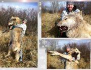 よく映画とかでオオカミに囲まれて食い殺されるシーンあるけど