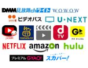 映画ファンついに気がつく「もしかしてネットフリックス&Hulu契約のほうがコスパよくね?」