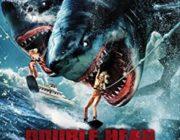 昔の映画「海にサメが!」「無人島で恐竜が暴れる!」「館にゾンビが潜んでいる!」