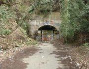 """【映画】映画「犬鳴村」で三吉彩花は呪われないか 実在する""""旧犬鳴トンネル""""はこんなに怖い"""